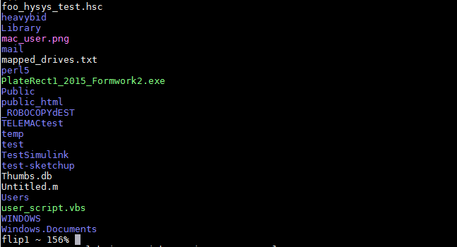 You are now connected to a UNIX terminal from here you can access files or run UNIX applications using UNIX commands. Use <em>ls</em> to see your home directory